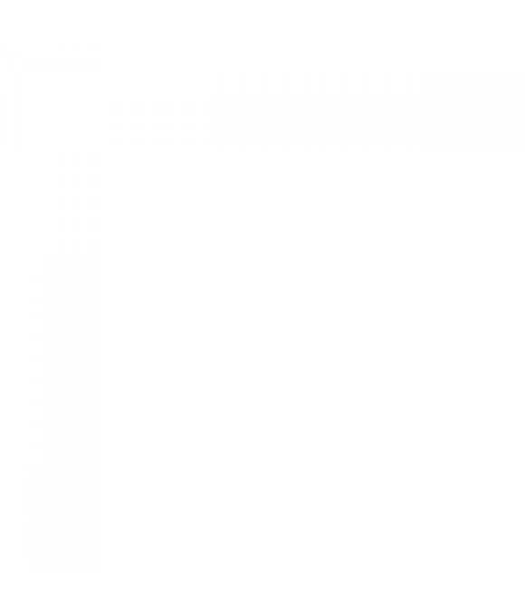 Картридж (ионообменная смола) для фильтра  АКВАСТИЛЬ А304 (SM-10A)